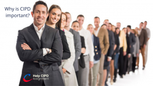 Why is CIPD important?