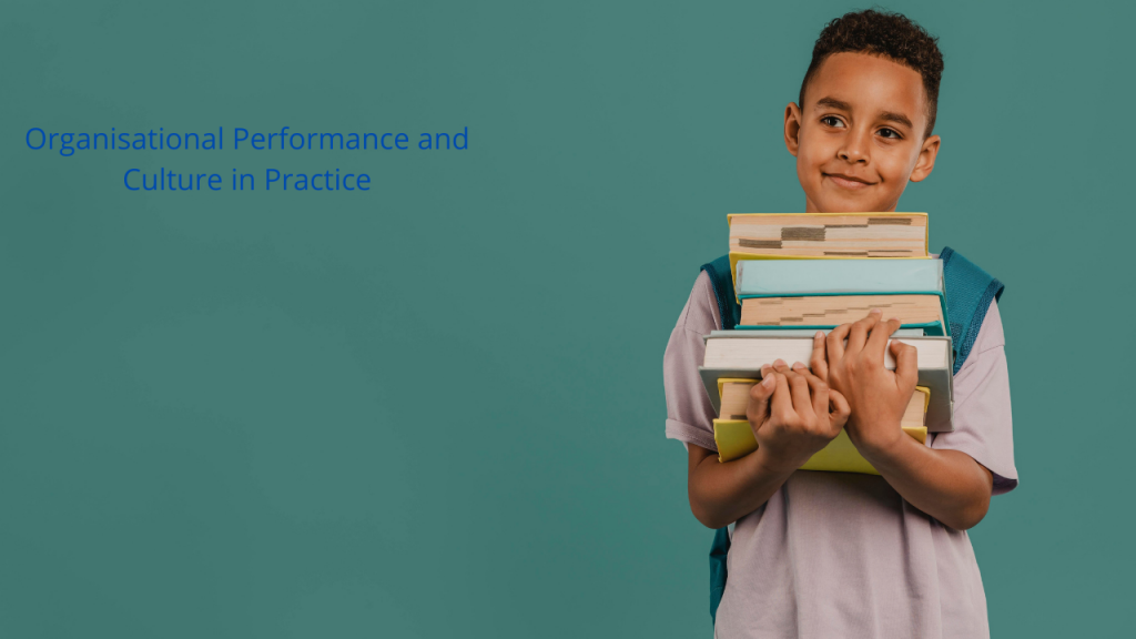 5C001 Organisational Performance and Culture in Practice